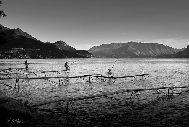 La pesca degli Agoni