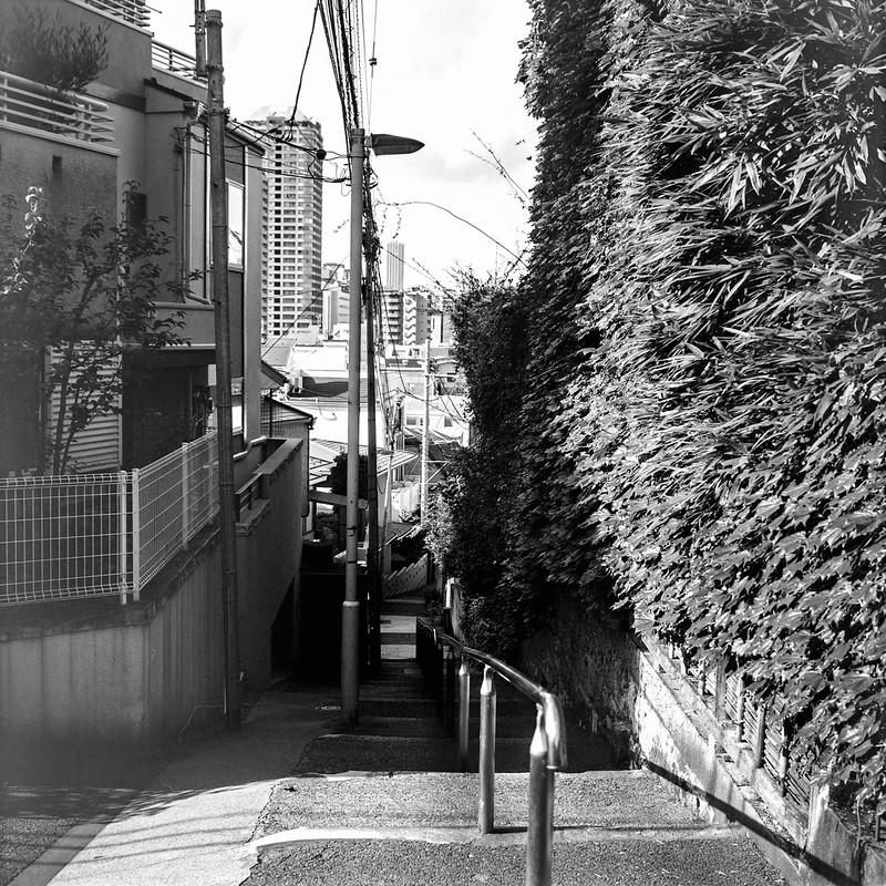 13Rolleiflex 2 8f+Fujifilm ACROSⅡ100文京区目白台一丁目日無坂