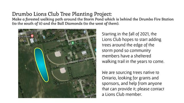 Lions Club Project: Tree Planting