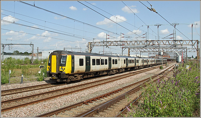 350106, Rugby
