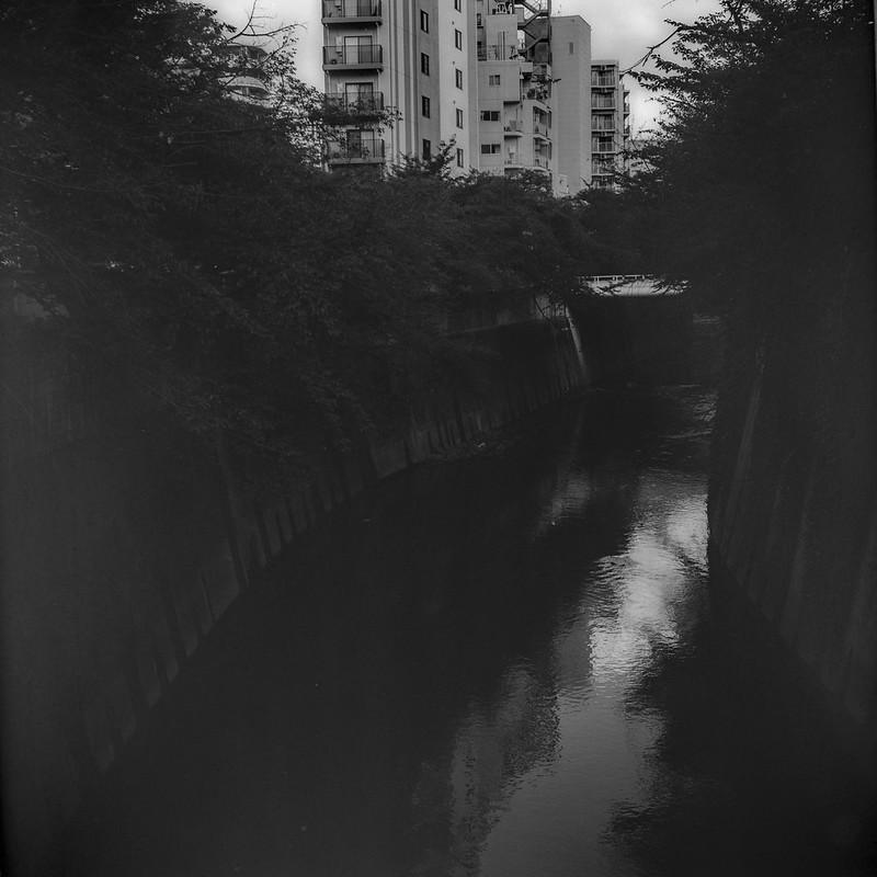 16Rolleiflex 2 8f+Fujifilm ACROSⅡ100豊島区高田二丁目面影橋から臨む神田川
