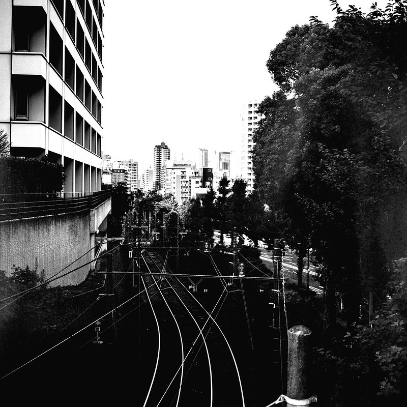 09Rolleiflex 2 8f+Fujifilm ACROSⅡ100雑司ヶ谷三丁目千渡世橋から臨む都電荒川線