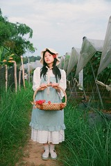 Vineyard in Cao Bang, Vietnam