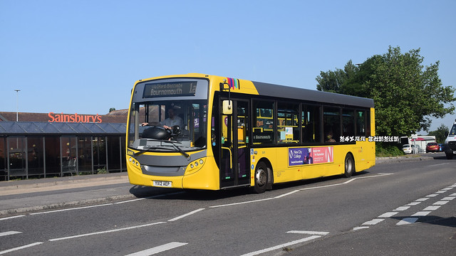 Yellow Buses 1a 2025