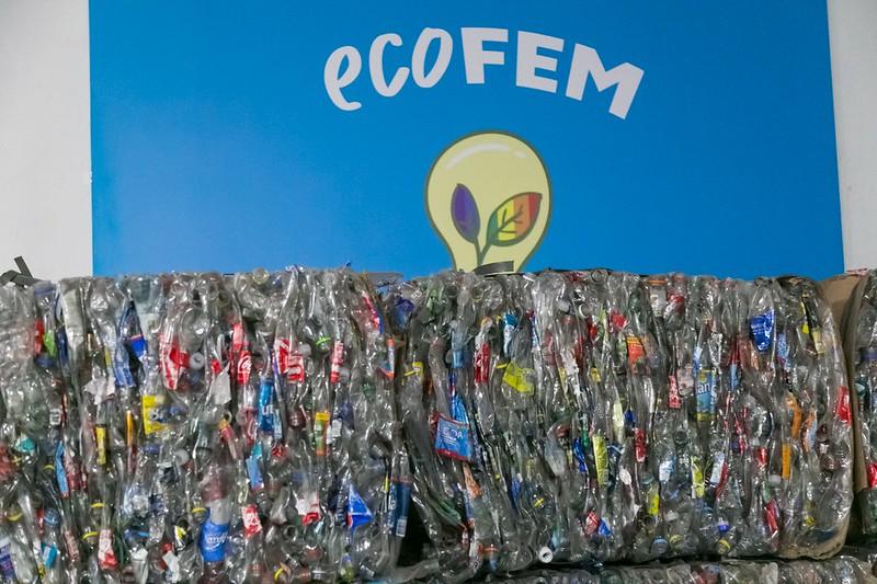 Ecofem (2)