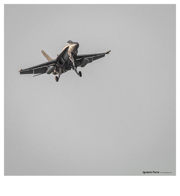 Hornet landing