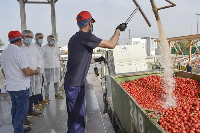 El alcalde de los Palacios y Villafranca visita la planta de tomate industrial de El Trobal 1