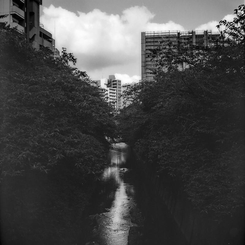 15Rolleiflex 2 8f+Fujifilm ACROSⅡ100豊島区高田一丁目中ノ橋から臨む神田川