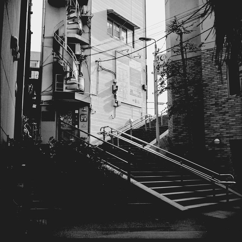 05Rolleiflex 2 8f+Fujifilm ACROSⅡ100目白三丁目階段路地