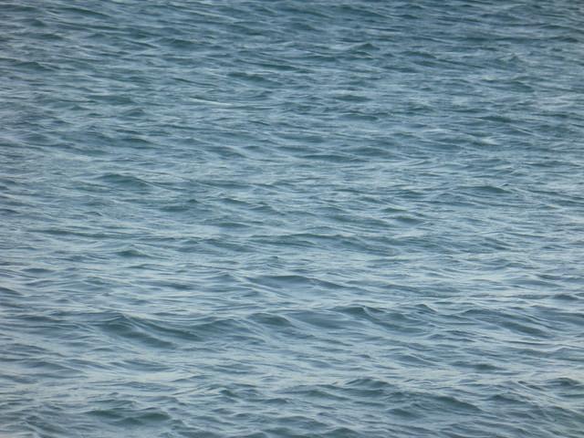 The sea!!  P1110859