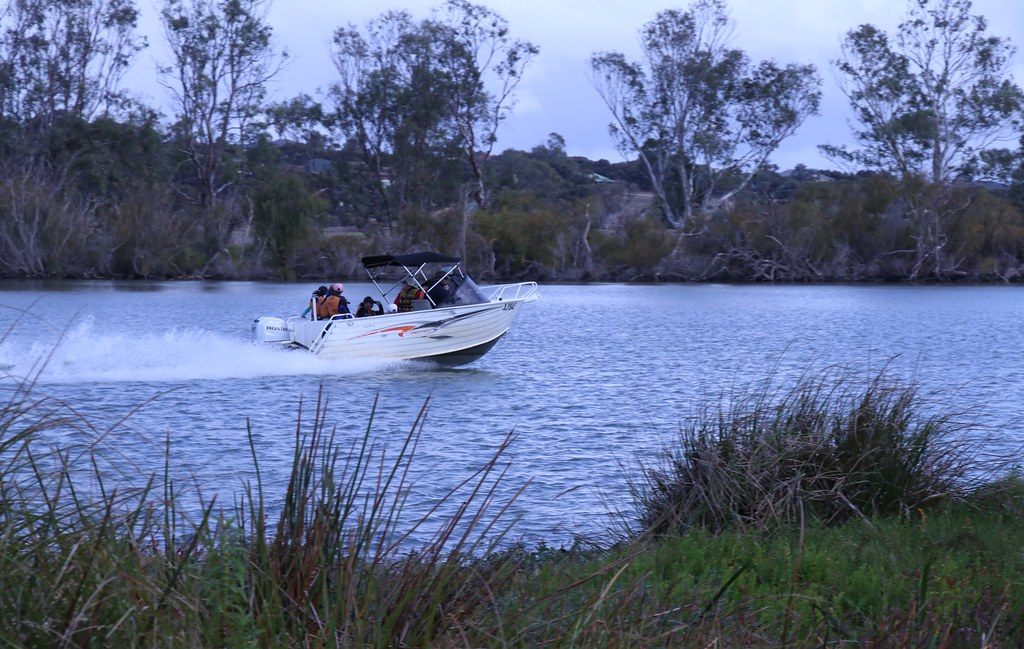 On the Murray