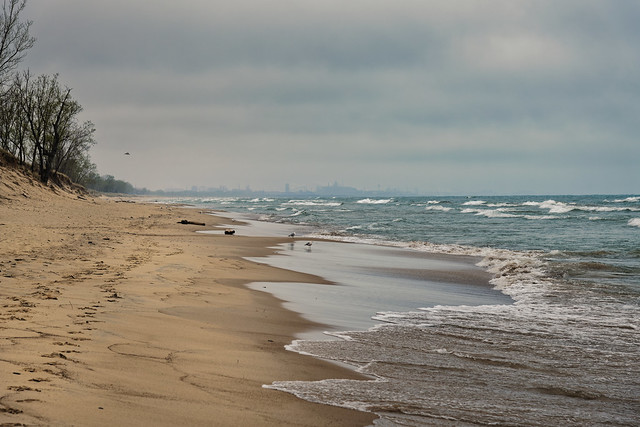 Along the Shores of Lake Michigan in Indiana Dunes National Park