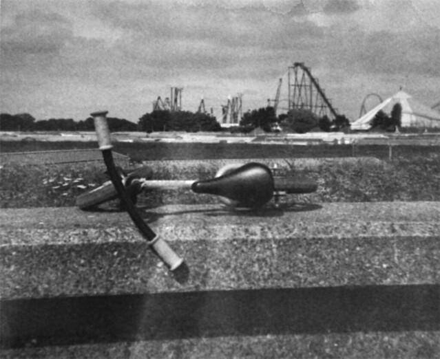 81. Seaside Casualty.