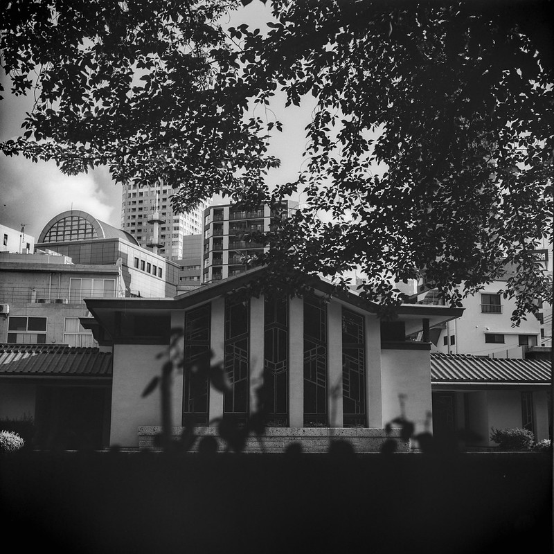 01Rolleiflex 2 8f+Fujifilm ACROSⅡ100西池袋二丁目自由学園明日館