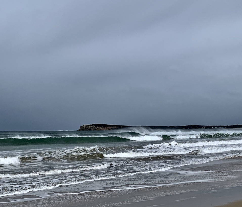 A wild and woolly day on the coast today!