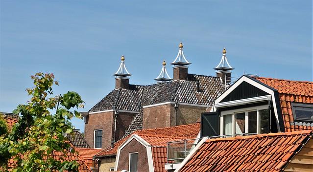 Elegant chimney caps
