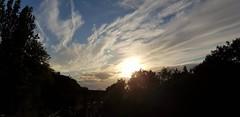 Evening sky, July '20