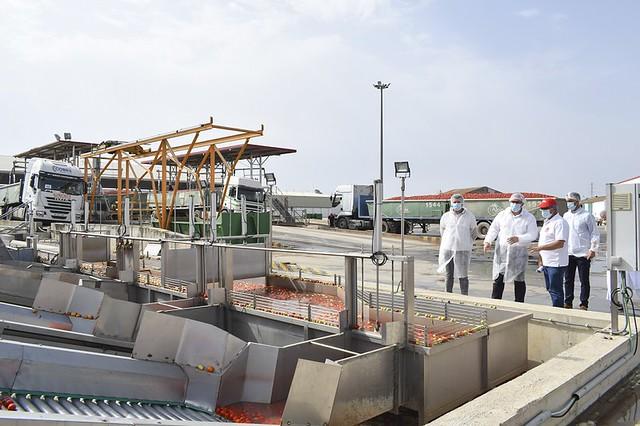 El alcalde de los Palacios y Villafranca visita la planta de tomate industrial de El Trobal