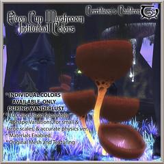 It's Wanderlust Weekend at Cerridwen's Cauldron!!