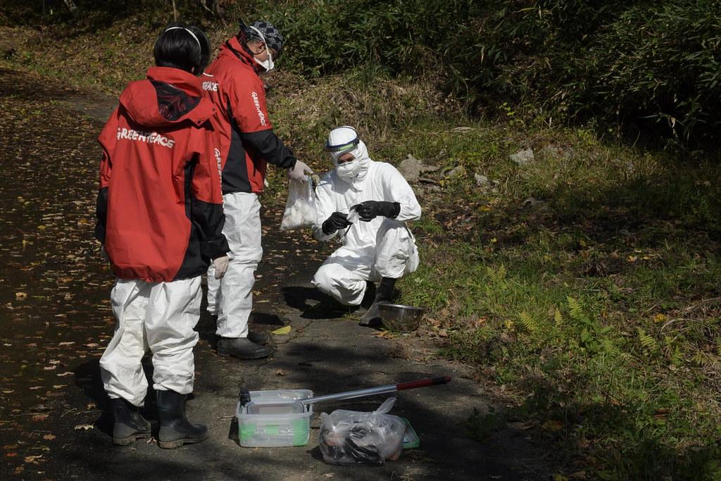 綠色和平的核輻射專家在福島的對馬市進行採樣調查。(圖片來源:綠色和平)