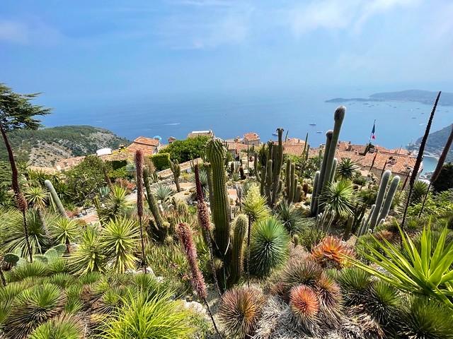Le jardin exotique de eze sur la Côte d'Azur