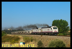 Intercity Monfragüe