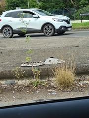 Scrapped Vauxhall Corsa wheel trim & Scrapped Ford Mondeo wheel trim