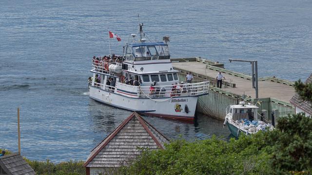 Traversier, Île Bonaventure, Gaspésie, PQ, Canada - 8677