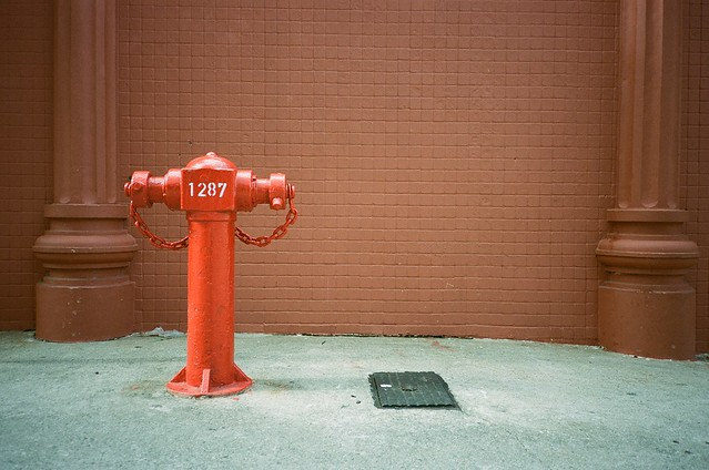 1287 fire hydrant