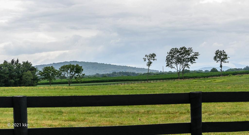 View of Blue Ridge Mountains