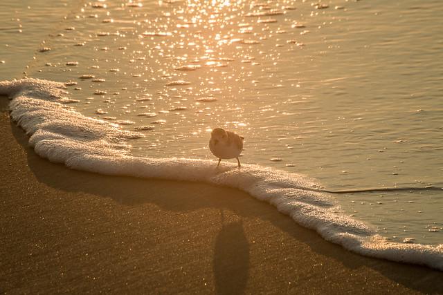 07-09-2021 ME vacation-9029.jpg
