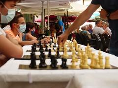 Ajedrez Chess (7)