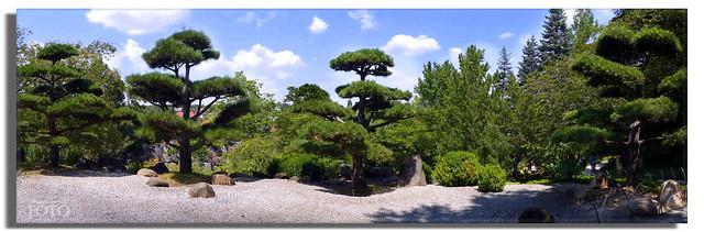 Japanischer Garten auf der BUGA 2021 in Erfurt * Japanese garden at the BUGA 2021 in Erfurt