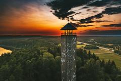 Silhouettes | Birštonas aerial #204/365