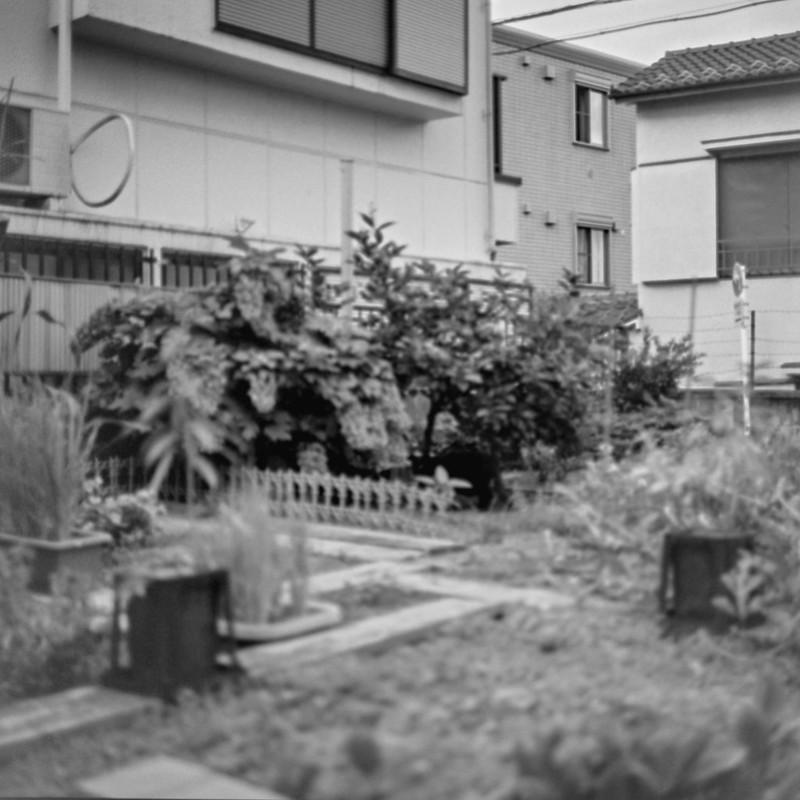 15ZENZA BRONICA S2+NIKKOR 75mm f2 8+KODAK 400TX南池袋三丁目坂の路地の花壇の猫 黒