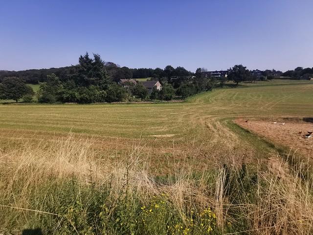 Farm in the Summer