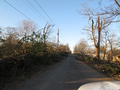 Clay Alabama 2012 Tornado Damage