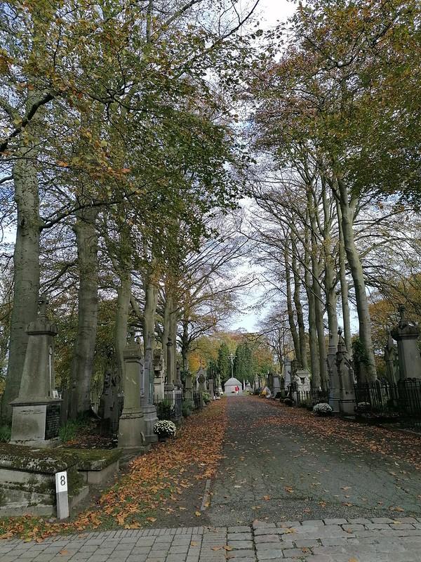 Avenida principal del cementerio