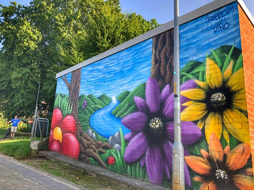beautiful colorful mural by artists Dino & Robbevm in Kessel-Lo