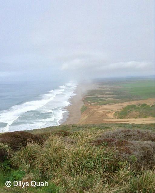 Point Reyes National Seashore, California Coastline (8 x 10)