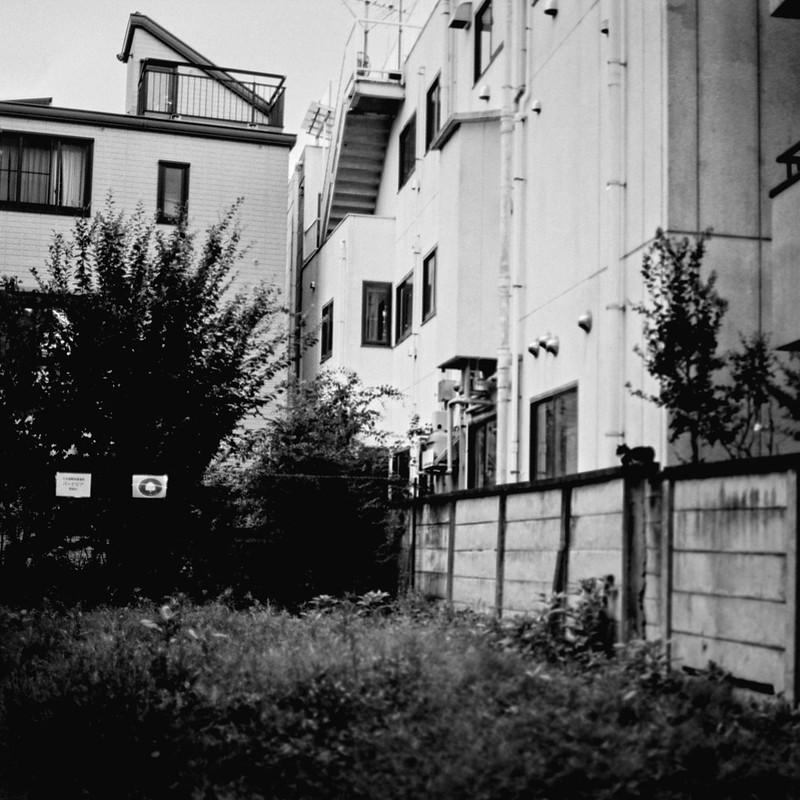 06ZENZA BRONICA S2+NIKKOR 75mm f2 8+KODAK 400TX雑司ヶ谷三丁目鬼子母神参道の猫 黒白