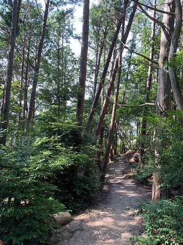 京都一周トレイル 大文字山〜蹴上