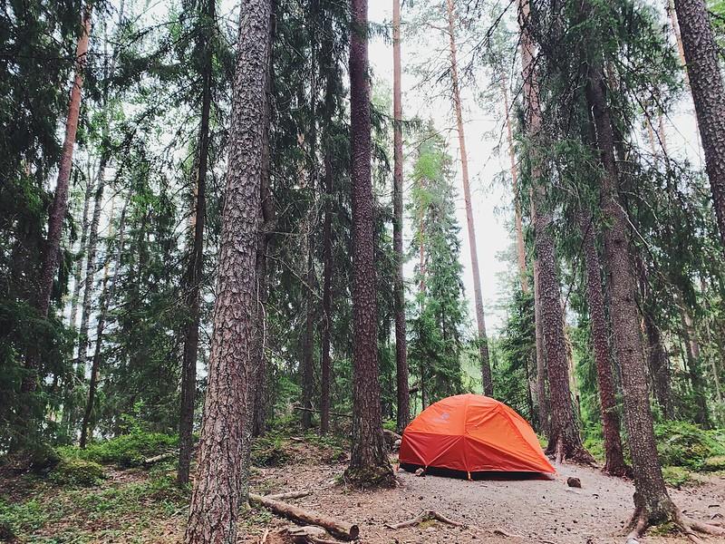Isojärven kansallispuisto Kalalahti