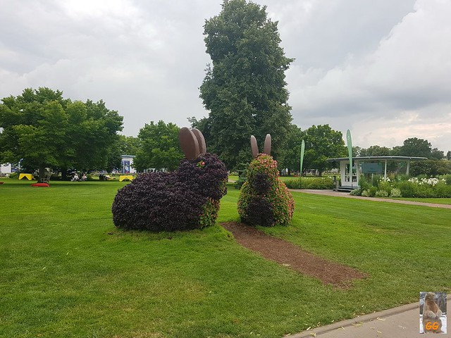 Ausflug BUGA in Erfurt 04.07.21.21016