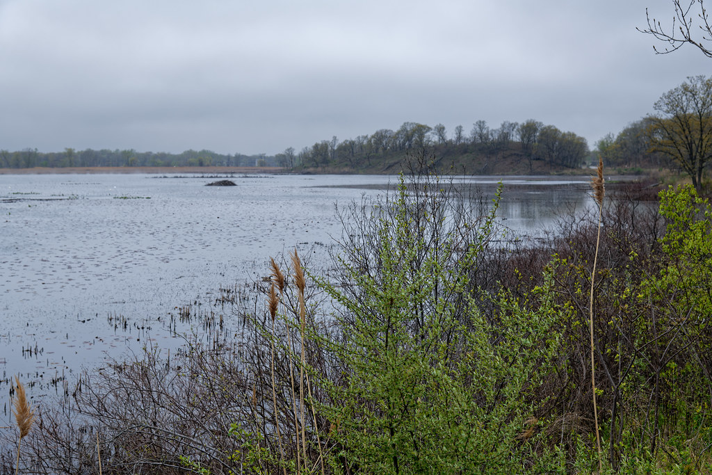 A Place to Visit Along the Shores of Long Lake (Indiana Dunes National Park)