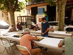 Ajedrez Chess (8)