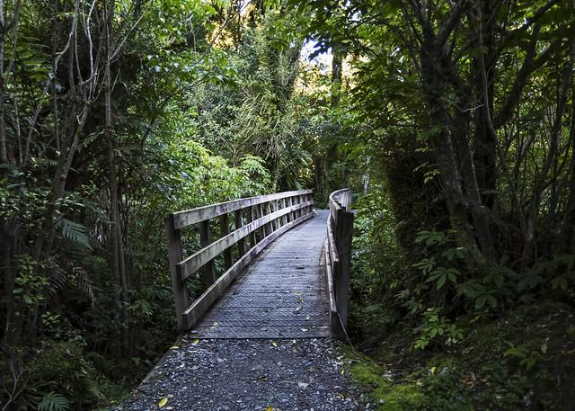 Gorge Trail - Explored