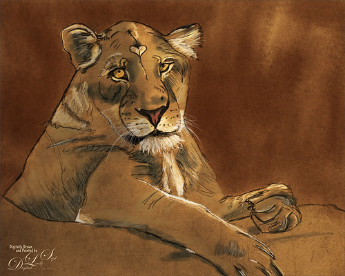 Image of a lioness drawing