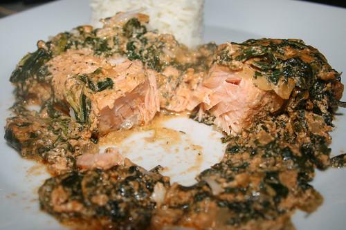 32 - Salmon cream gratin with spinach - Lateral cut / Lachs-Sahne-Gratin mit Spinat - Querschnitt