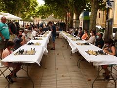Ajedrez Chess (1)